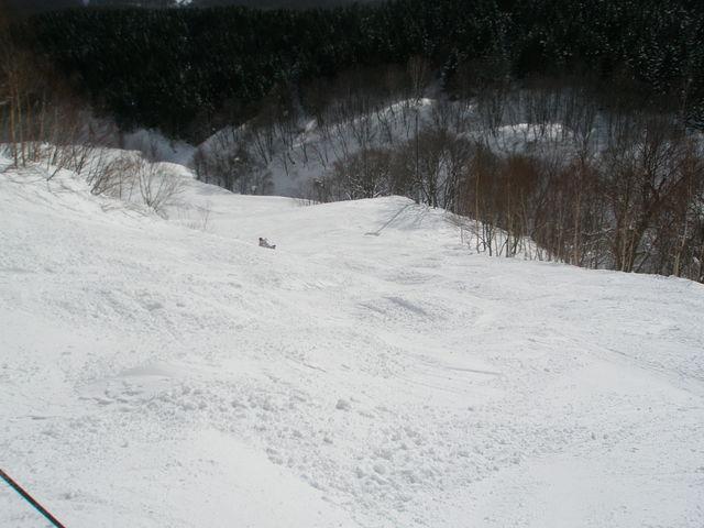 P1310006.jpg