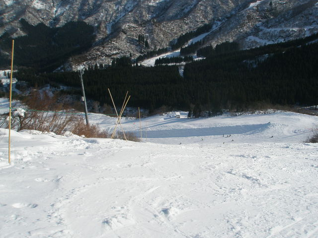 P1030024.jpg